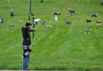 Hunting, Sport and Target Shooting Targets