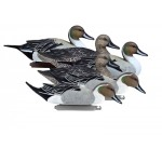 Battleship Pintail, Foam Filled